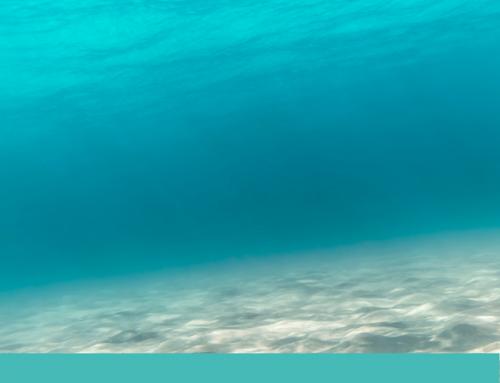 Descubriendo el océano emocional de las altas capacidades